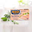 Bild von Canned Salmon Fillets